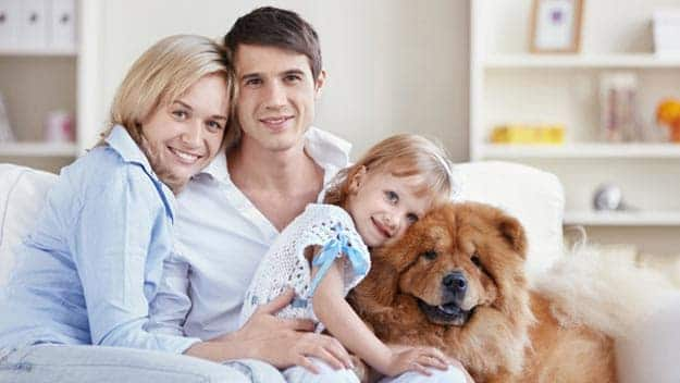 Wills & Trusts dog-young-family Direct Wills Marylebone
